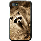 Raccoon Hard Case For Blackberry Q5