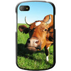 Cow Hard Case For Blackberry Q10