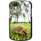 Prickly Hedgehog Hard Case For Blackberry Q10