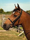 Heritage English Leather Show Bridle Pretty Stitch Detail On Brow And Noseband