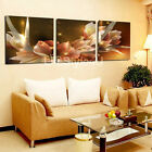 3PC Modern flower picture Living Room Wall Art Painting on Canvas (No Frame)