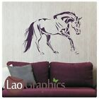 Beautiful Horse Wall Sticker / Vinyl Art Decal / Large Horse Wall Transfer HO10