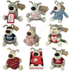 Boofle Plush Bear Soft Toys - Choice of Sizes and Captions To Choose From