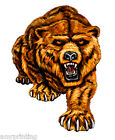 Full Bear Mascot Logo T-Shirt, ma30024
