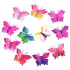 Butterfly Dog Bow Pet Dog Hair Bows with Clips Small Dog Bows Dog Grooming Bows