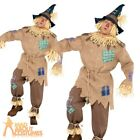 Mens Scarecrow Costume Adult Fancy Dress Fairytale Book Week Straw Outfit
