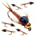 9 X Trout Fishing Flies COPPER JOHN Barbed / Barbless HOOK 10 12 or 14 x 9 FLIES