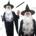 MENS WIZARD ROBE WHITE WIG BEARD WAND HAT HALLOWEEN FANCY DRESS COSTUME