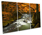 Autumn River Forest CANVAS WALL ART TREBLE Box Frame Print