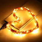 Warmwhite Usb Copper Wire String Lights 33ft 100 Leds Christmas Party Holiday