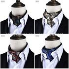 Mens new FASHION Wedding Party FANCY paisely groom Necktie tie ascot cravat