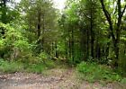 NORTHERN ARKANSAS, NO RESERVE, PRIVATE LOT, WATER, ELECTRIC, NEAR NORFORK LAKE!!