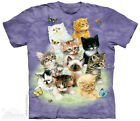 10 Kittens T-Shirt from The Mountain - Adult S - 5X & Child's S - XL
