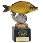 FISH COMMON CARP ANGLING FISHERMAN TROPHY RESIN 3 SIZES AVAILABLE ENGRAVED FREE