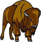 AMERICAN BISON HUNTING color vinyl decals bumper stickers (145)