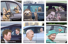 Novelty Animal Character Ride With Window Stickers Horror Joke Trick Glass Decal