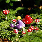 Внешний вид - 20pcs Cute Miniature Resin Mushroom Dollhouse Craft Fairy Garden Bonsai Decor