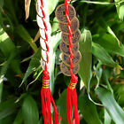 FENG SHUI FORTUNE Coin Red Hanging Cure NEW Wealth Good Luck ProsperitySN