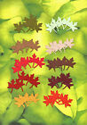 Quickutz Silhouette Colorful Fall Leaves Die Cut Sets Embellishments,  Sizzix