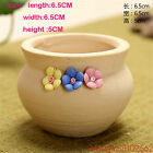 succulent plants ceramics Small fresh Mini rural flowers Potted plants