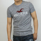 New Hollister by Abercrombie Men Applique Icon Logo Graphic Tee Shirt All Size