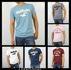 cream shirts for men - New Hollister by Abercrombie Men Applique Icon Logo Graphic Tee Shirt All Size