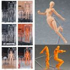 Figma Archetype Next HE SHE PVC Art Ver 2.0 Action Toy Figure Mould Mold Gift US