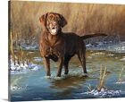 Premium Thick-Wrap Canvas Wall Art entitled Top Dog Chocolate Lab
