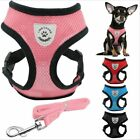 NEW Soft Breathable Air Nylon Mesh Puppy Dog Pet Cat Harness and Leash Set sz M