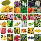 Fruit Vegetables Seeds Garden Tree Outdoor Fruit Indoor Rare Organic Seed