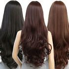 FP- Women Long Curly Wavy Full Wig Heat Resistant Hair Cosplay Party Lolita Pres