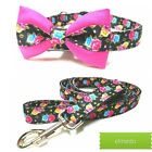 Dog Collar-Colorful Roses,floral Collar with bow, collar with leash,MADE IN USA