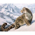 Hot DIY Oil Canvas Paint By Number Kit Painting DIY Snow Leopard No Frame Gift