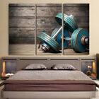Dumbbells Fitness Body Gym Painting Modern Poster Canvas Wall Art Home Decor