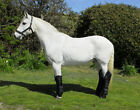 RHINEGOLD FULL LENGTH HORSE TRAVEL BOOTS - Set Of 4 - Travel Protection Boots