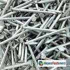 Galvanised Round Wire Nails-Choice of Length. 25mm-150mm. FREE UK STD DELIVERY.