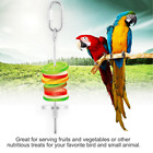 1PCS Stainless Steel Skewer Toy Treat Bird Parrot Food Fruit Holder Stick