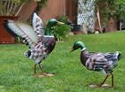 Outdoor/ Indoor Accent Metal Mallard Duck Flying Figurine Statues Bird