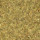 The Spice Lab No. 5079 Whole Fennel Seeds All Natural Kosher Non GMO Gluten Free