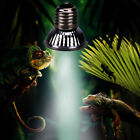 UVA+UVB Reptile Tortoise Heating Lamp Emitter Light Spectrum for Pet Brooder