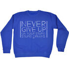 Funny Sweatshirt Never Give Up On Your Stupid Dreams Birthday tee Gift JUMPER