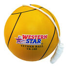 """Tetherball w/ Rope Full Size 8.5"""" Playground W/ Pump Assorted Colors!"""