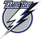 Tampa Bay Lightning NHL Color Die Cut Vinyl Decal Sticker Choose Size cornhole $4.95 USD on eBay