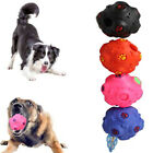 Pets Puppy Dogs Fetch Silicon Ball Squeaky Treats and Chews Bite Training Toy