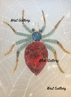 "Black Widow Spider, by West Swatti oill painting on a canvas size 12 by 16"", NEW"