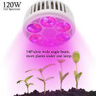 LED Grow Light Bulbs 120W 36LED Chips Full Spectrum For Plants Hydroponics Grow