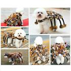 Winter Novelty Spider Cat Dog Costumes Halloween  Pet Dog Suits For Teddy S M L