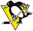 Pittsburgh Pengiuns NHL Color Die Cut Vinyl Decal Sticker - You Choose Size