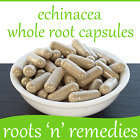 Echinacea Purpurea Whole Root - 400mg - Premium Quality & Pure.