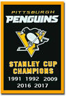 Pittsburgh Penguin Stanley Cup Champions Fridge Magnet Size 2_X_3